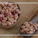 تاریخچه لوبیا چیتی