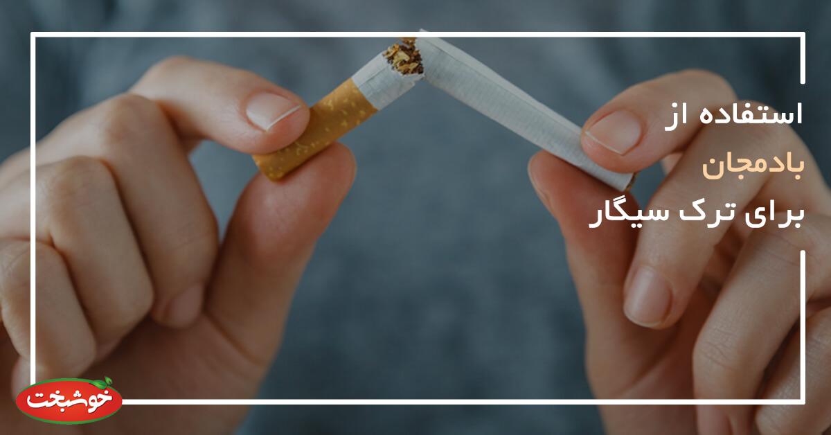 استفاده از بادمجان برای ترک سیگار