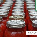 مراحل تولید رب گوجه در کارخانه